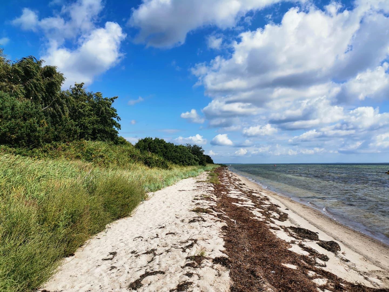 Femø beach